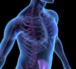 Dr. Jason Godo, DC, Osteoporosis