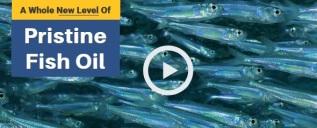 Pristine Fish Oil